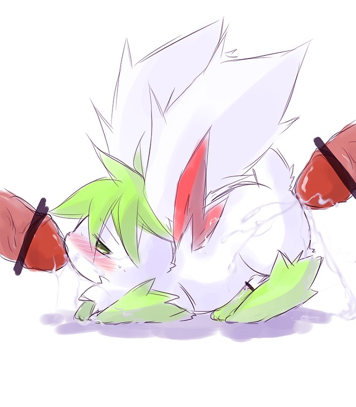 to how get shaymin sky form Lilo and stitch bonnie and clyde